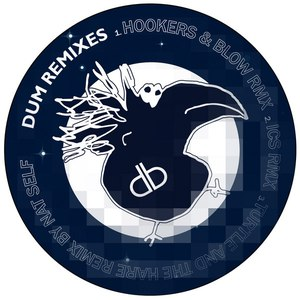The Martin Brothers альбом Dum Remixes