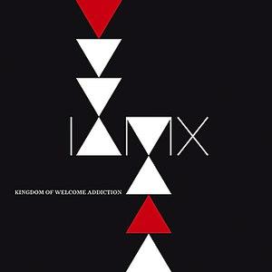 IAMX альбом Kingdom Of Welcome Addiction (Deluxe Edition)