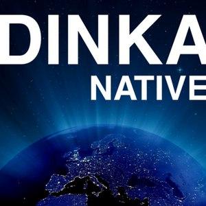 Dinka альбом Native