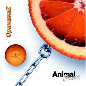 Animal ДжаZ альбом ОранджаZ