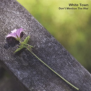 WHITE TOWN альбом Don't Mention The War