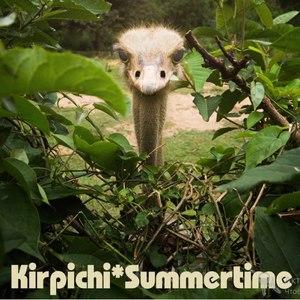 Кирпичи альбом Summertime