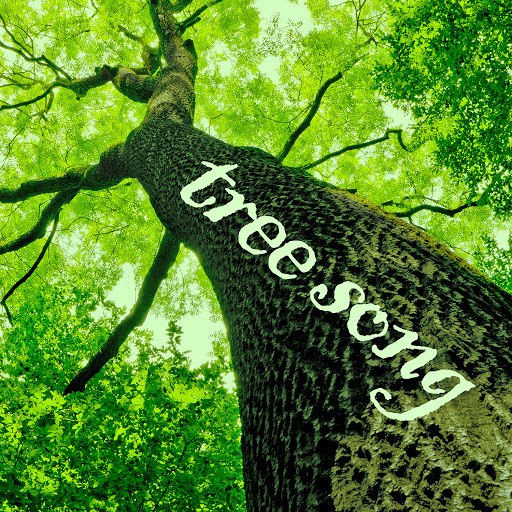 Deep Focus альбом Tree Song - Sounds of Jungles, Forests, And Gardens