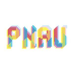 PNAU альбом Pnau