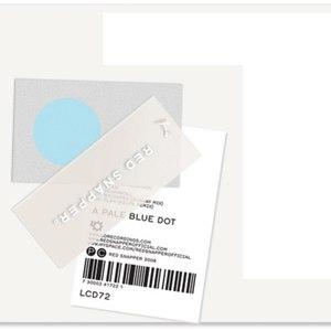 RED SNAPPER альбом Pale Blue Dot