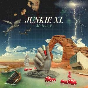 Junkie XL альбом Molly's E