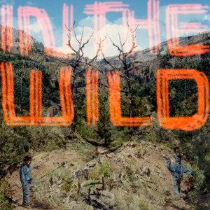 FaltyDL альбом In The Wild