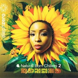 Bluetech альбом Natural Born Chillers 2