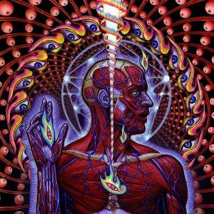 Tool альбом Metal Heads