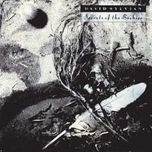David Sylvian альбом Secrets Of The Beehive