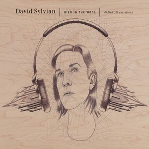 David Sylvian альбом died in the wool
