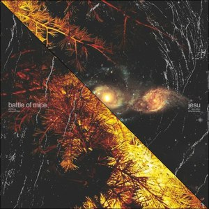 Jesu альбом Split
