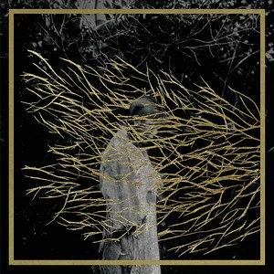 Forest Swords альбом Engravings