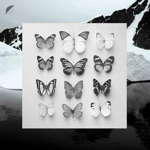 Christian Löffler альбом Young Alaska