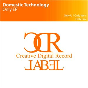 Domestic Technology альбом Only EP