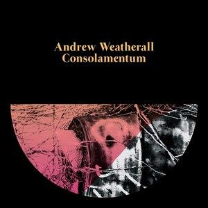 Andrew Weatherall альбом Consolamentum