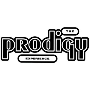 The Prodigy альбом Experience