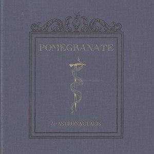 Astronautalis альбом Pomegranate
