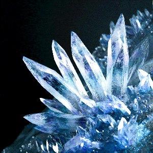 Camellia альбом crystallized