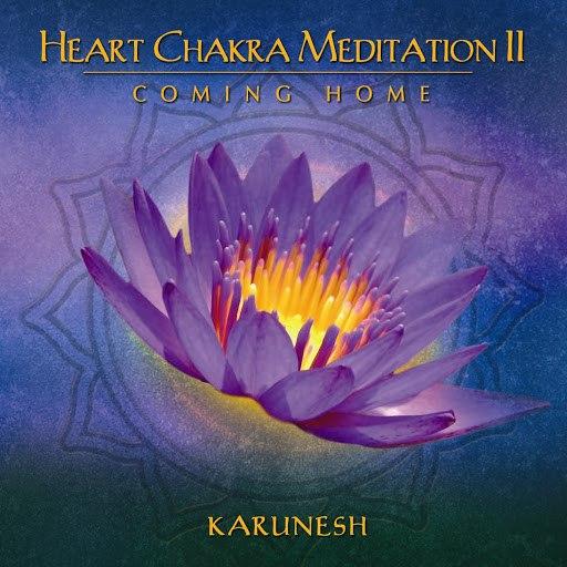 Karunesh альбом Heart Chakra Meditation II - Coming Home