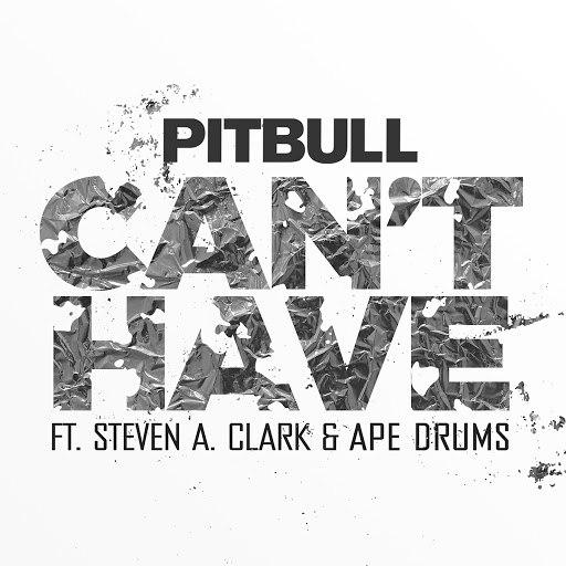 Pitbull альбом Can't Have