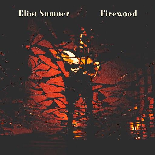I Blame Coco альбом Firewood
