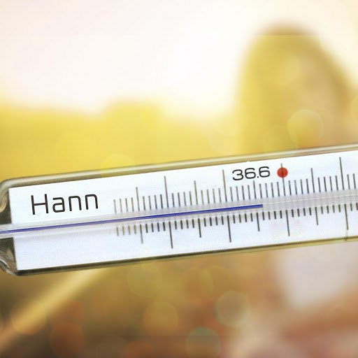Hann альбом 36.6