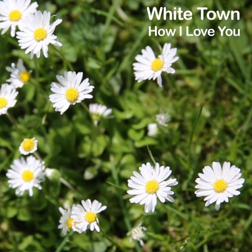 WHITE TOWN альбом How I Love You