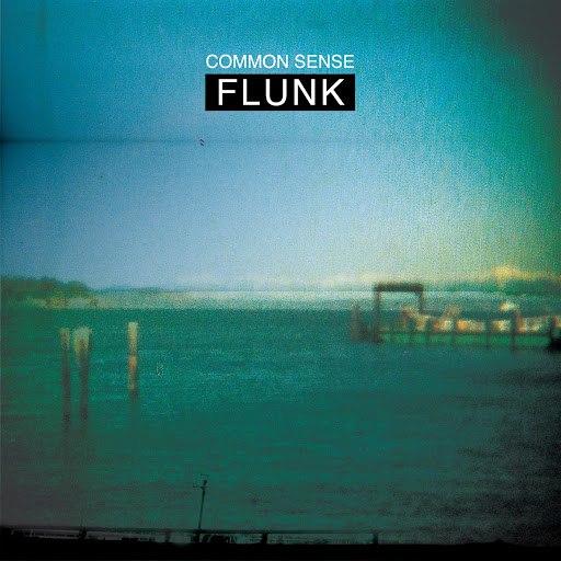Flunk альбом Common Sense