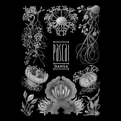 Паскаль альбом Dansa