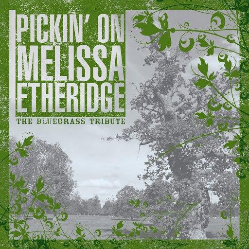 Pickin' On Series альбом Pickin On Melissa Etheridge Volume Two