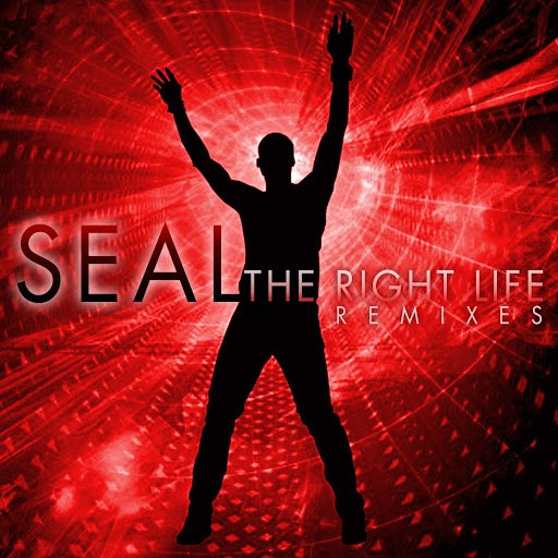 Seal альбом The Right Life - The Remixes