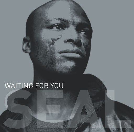 "Seal альбом Waiting For You (12""/CD Maxi 42656)"