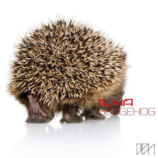 Ilya альбом Hedgehog