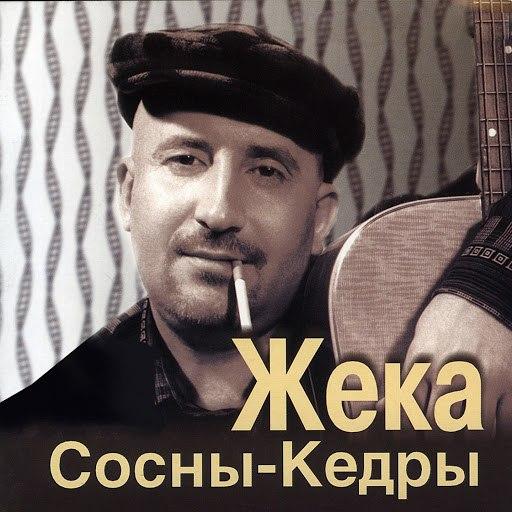 Жека альбом Сосны-кедры