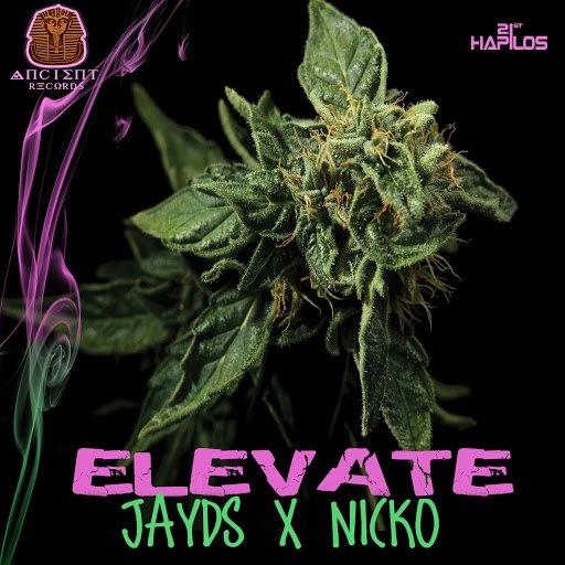 Nicko альбом Elevate