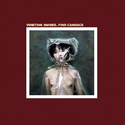 Venetian Snares альбом Find Candace