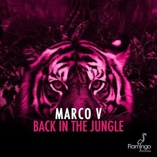 Marco V альбом Back In The Jungle