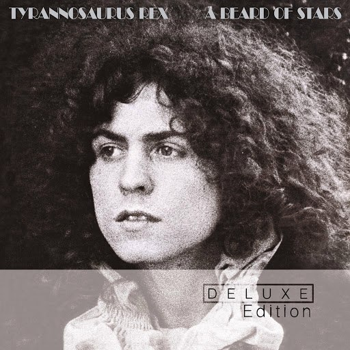 T. Rex альбом A Beard Of Stars (Deluxe Edition)