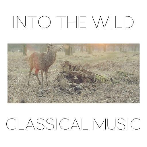 Эдвард Григ альбом Into The Wild Classical Music