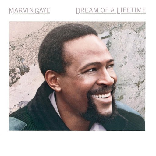 Marvin Gaye альбом Dream Of A Lifetime