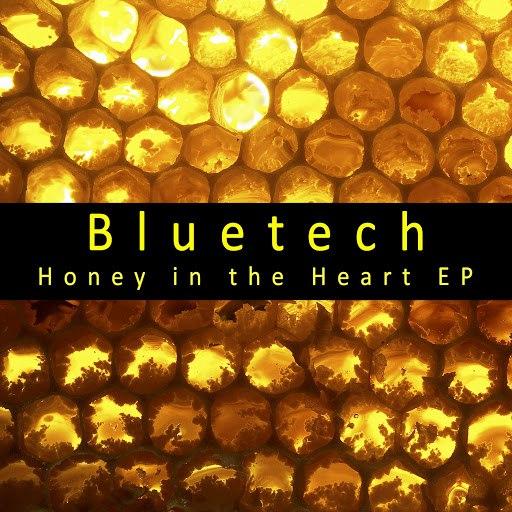 Bluetech альбом Honey in the Heart EP