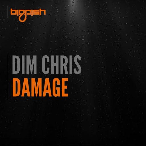 Dim Chris альбом Damage