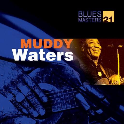 Muddy Waters альбом Blues Masters 21