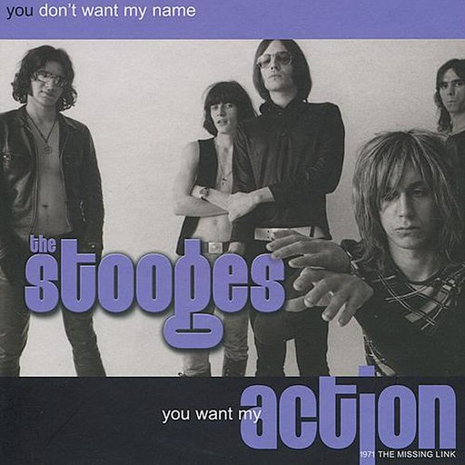 The Stooges альбом You Don't Want My Name, You Want My Action: 1971 The Missing Link (Live)