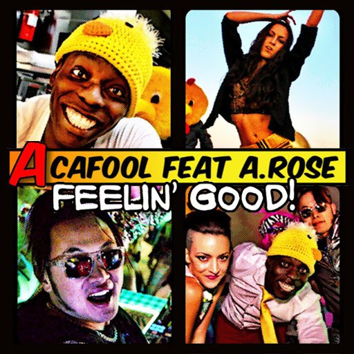 Acafool альбом Feelin Good (feat. a.Rose)