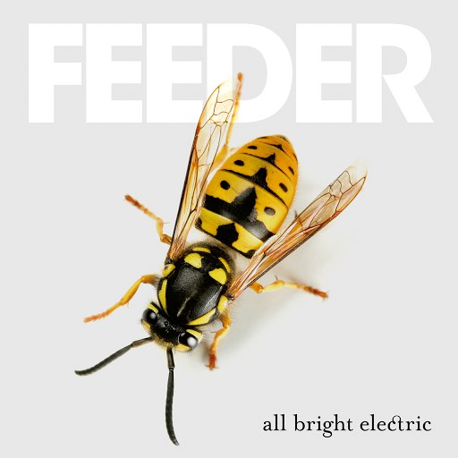 Feeder альбом All Bright Electric