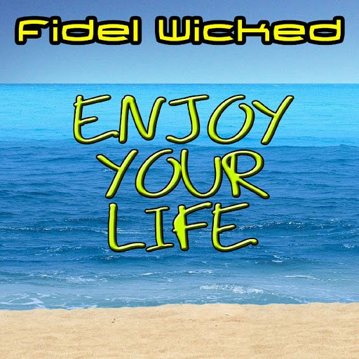 Fidel Wicked альбом Enjoy Your Life (Remixes)