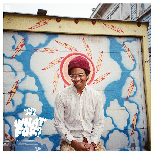 Toro Y Moi альбом What For?