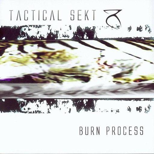 Tactical Sekt альбом Burn Process